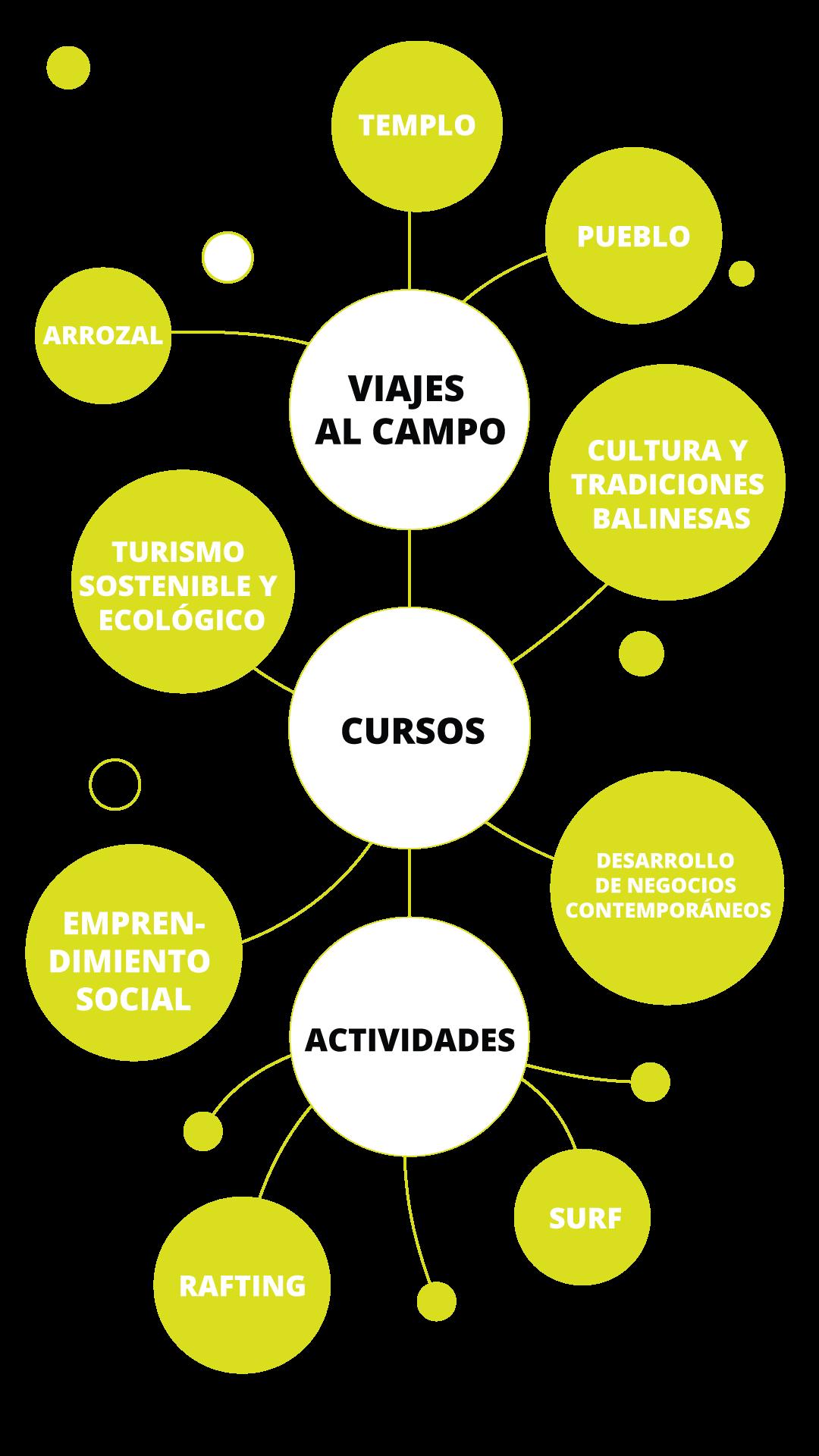 Estructura del Curso de Verano GoBali